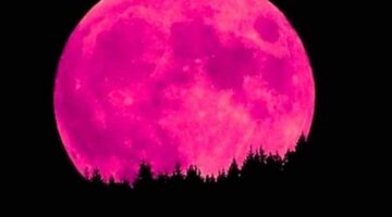 Strawberry Moon Menyapa Indonesia Sabtu Dini Hari