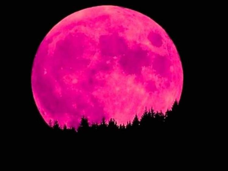 Strawberry Moon Menyapa Indonesia Sabtu Dini Hari