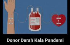 Mayoritas Responden Tidak Setuju Mendonorkan Darah Saat Pandemi